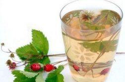 Травяной чай из клевера и земляники - напитки