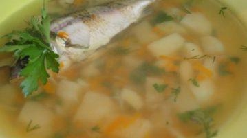 Уха из карася - супы на первое